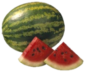 [Watermelon plus slices]